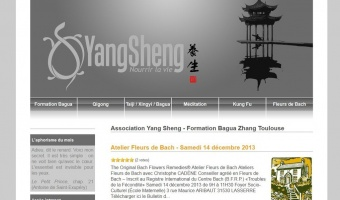 Qigong Training in Toulouse